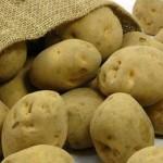 20101222-potato1