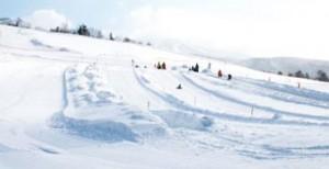 スキージャムのゲレンデは広大な緩斜面で基礎練習に最適です