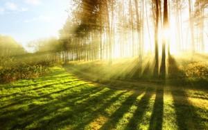 ひなあられには自然のエネルギーを取り込む願いがある